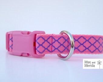 Dog Collar, Pink and Purple adjustable dog collar, pet gift, pet accessory, Quatrefoil Lattice print