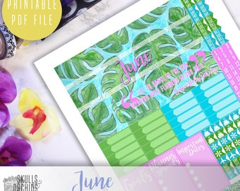 50% OFF! HAPPY PLANNER June Monthly View Kit – Printable Planner Stickers