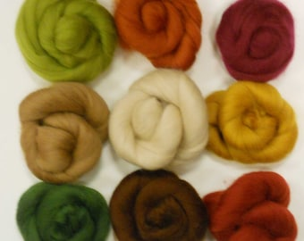 Felting Wools - Merino Wool Tops - EARTH Tones