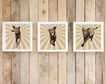 Chocolate labrador sunburst wall art, labrador retriever starburst wall decor dog gift, pet owner gift, set of 3 prints, set of three prints