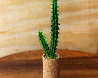 Cactus in Cork - Miniature Modern decor, 1/6, 1/12 or 1/16 scale