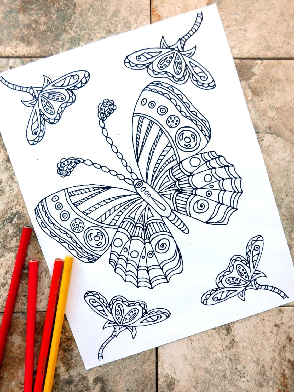 Schmetterling Ausmalbilder Malvorlagen Blume Coloring