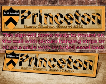 Princeton University Name and Class Wall or Table Top Display Sign Mounted and ready to hang or display on a table. FAST & FREE SHIPPING