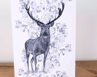 Rose Stag Greetings Card