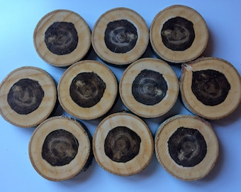 10 PCS |  Wooden Circles | Wooden Slices | Rustic Wood Slices For DIY | Rowan Tree Slices | Wood Discs For Craft | Rowan Tree Discs |