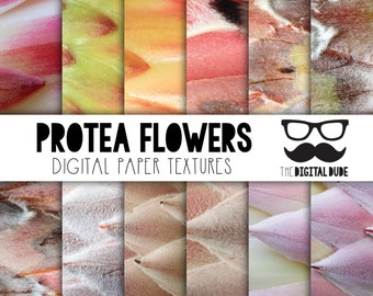 Premium Digital Paper Set, Protea flowers, Scrapbook Paper, Protea Digital Paper, Textured Protea flowers, Instant Download