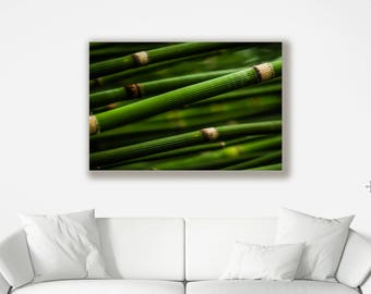 Natural Bamboo Canvas - Various Sizes of Wall Art available