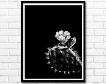 Cactus Print, White and Black Print, Printable Art, Black and White Nature Decor, Flower Prints, Wall Decor INSTANT DOWNLOAD - 1031