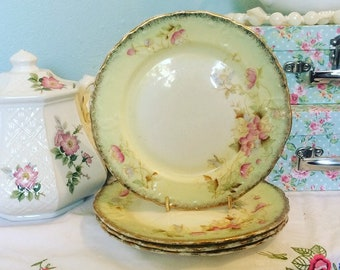Stunning Antique Handpainted Britannia China Company Set Of Four Dessert Plates Tea Plate Side & Antique china plates | Etsy