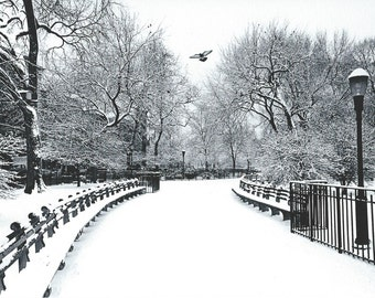 New York's Tompkins Square, 1973. An Original Photo Art Card.