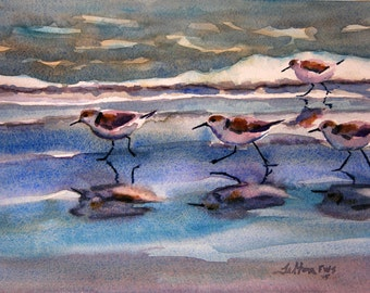 Sandpipers running in the shade along the beach...seafoam, gentle waves and blue sky reflection.