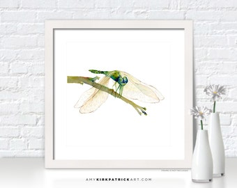 GREEN DRAGONFLY Watercolor Art - Dragonfly Print, Dragonfly Greeting Cards, Dragonfly Painting, Dragonfly Wall Decor, Dragonfly Wall Art