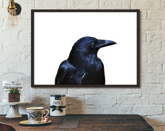 Raven Print, Poster, Printable art, Gift idea, Wall art, Nature Photography,