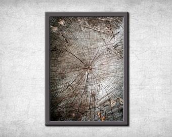 Tree texture,  Wood texture, Nature wall art, Fine art photography, Nature tree print, Tree art, Wood Art print, Wood Photo, Nature photo,