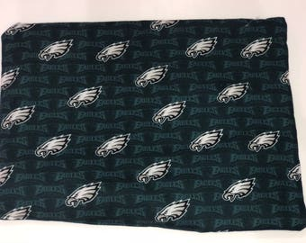Eagles Catnip Mat