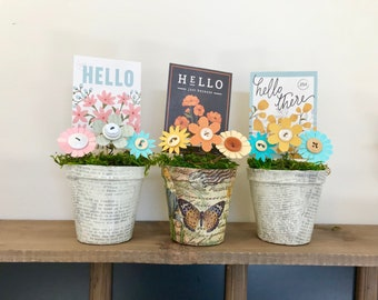 Peat pots with flowers and cheerful 'Hello' message bring spring indoors!