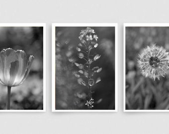 Black and white nature photography prints, dark grey wall art set, grey bathroom decor modern print set 3 botanical pictures, vertical art