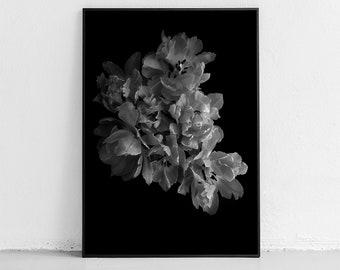 Black and White Prints Printable Wall Art Digital Photography Wall Decor Bedroom Printable Art Flower Print Bedroom Wall Decor Flower Prints