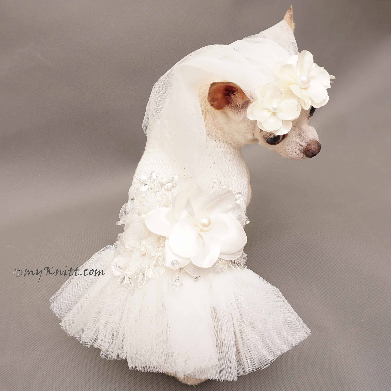 Dog Wedding Dress Dress Nour