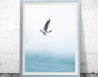 seagull print, bird print, beach decor, seagull art, bird art, coastal art, wall art, coastal decor, Wall Art Print, Water print