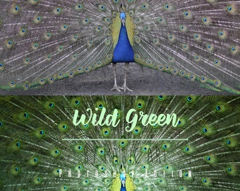 Wild Green - Photoshop Action
