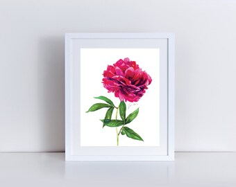 Peony Art Painting Watercolor Pink Floral Flower Cute Print Pretty