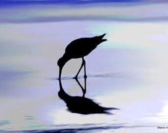 Shorebird Art, Digital Watercolor Painting, Nautical Beach, Ocean Sea, Shore Bird Home Decor, Blue Wall Hanging, 8 x 10, Giclee Print