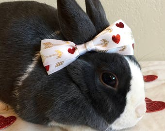 Heart And Arrow Bunny Bow/CUTE/Bunny Pictures/Princess Bunnies/Dress Up/ Pretty/ If You Love Your Bunny/