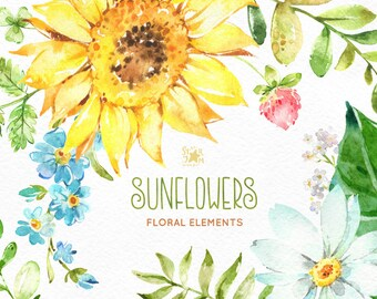 Sunflowers. Separate Elements. Watercolor floral clipart, flowers, summer, leaf, green, yellow, sunny, leaves, frames, greeting, babyshower