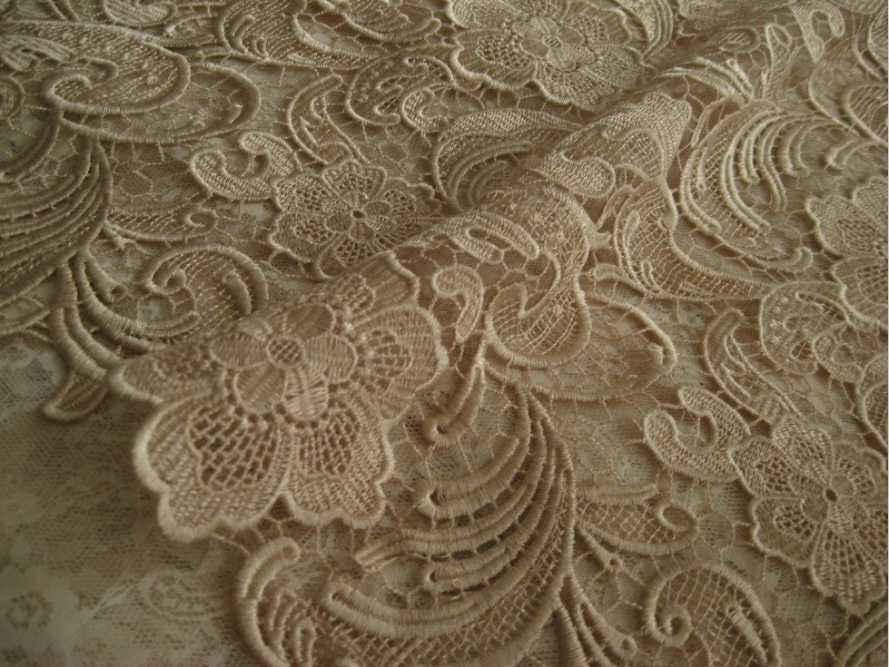 Champagne Lace