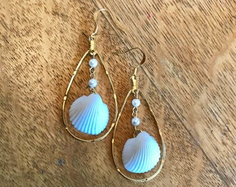 Pearl and Clam shell Earrings