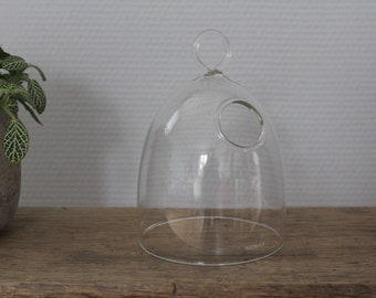 Bell jar for cactus or object, cloche protection or presentation