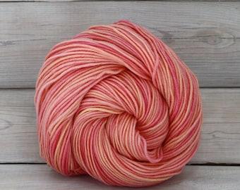 Aspen Sport - Hand Dyed Superwash Merino Wool Sport Yarn - Colorway: Sorbet