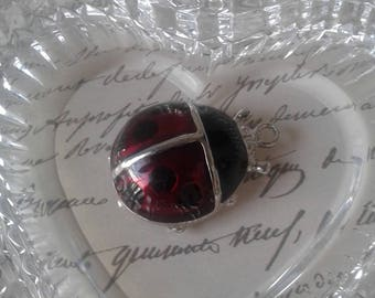 Vintage Charm - Ladybug