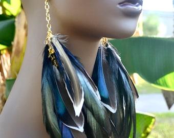 Mallard Duck Feather Earrings, Real Feather Earrings, Long Black Feather Earrings, Iridescent Feather Earrings, Blue and Black Feathers