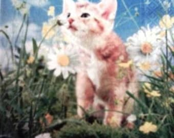 TOWEL in red paper kitten in flowers #AN011