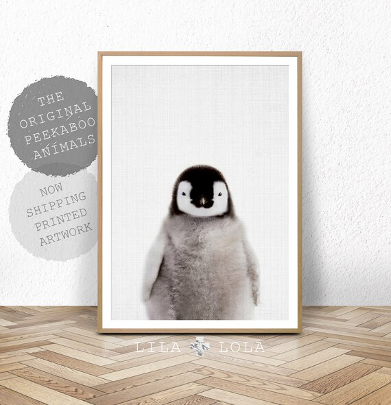 Nursery Animal Wall Art Print Baby Penguin Emperor
