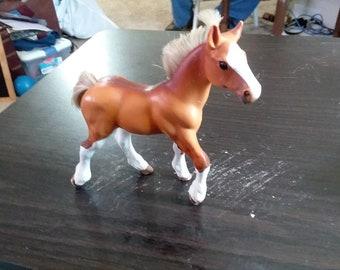 Grand Champion foal