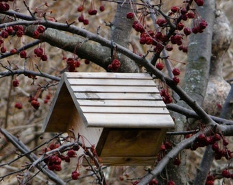 Photograph of a bird house in the crab apple tree