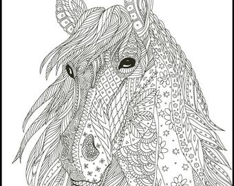 Horse Lover Adult Coloring Pages Coloring for Adults