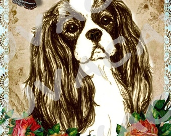 Cavalier King Charles Spaniel Blank Greeting Card