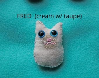 Cream-colored happy kitten