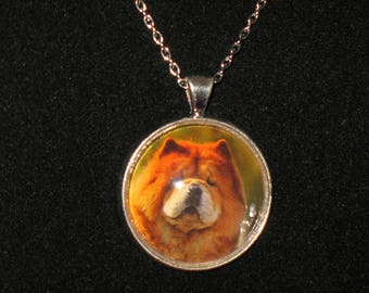 Chow Chow Dog Breed Glass Cabochon Silver Pendant Necklace 24 inch