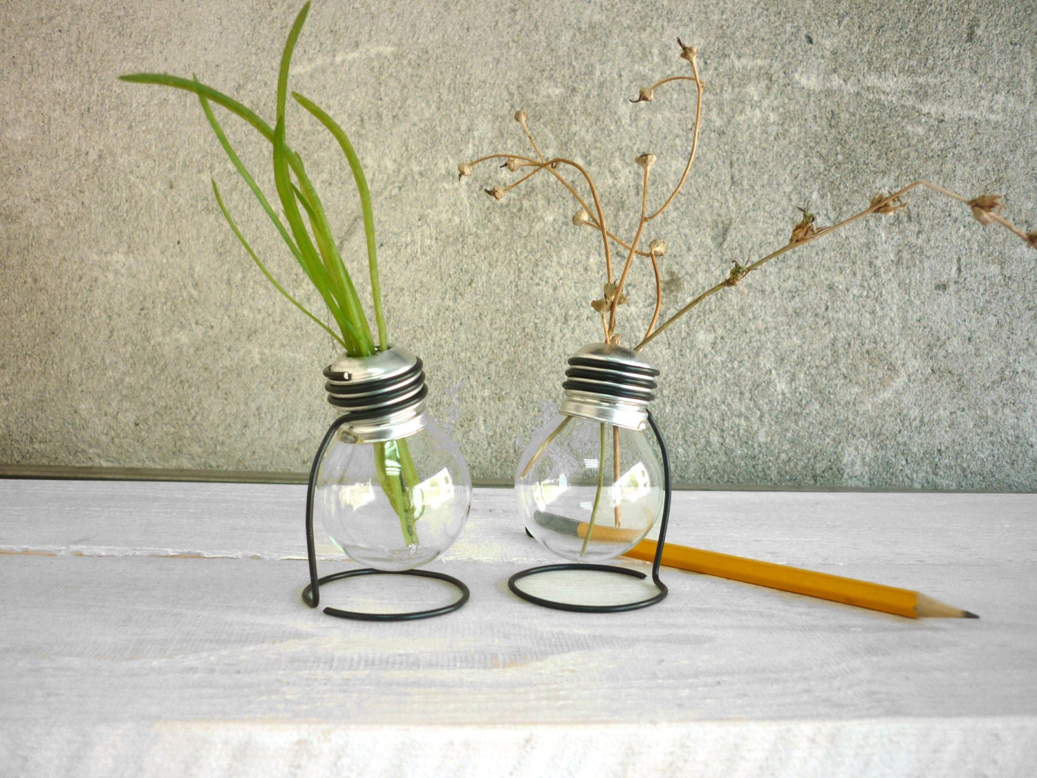 Light bulb vase glass vase terrarium plant set of 2 vases request a custom order and have something made just for you reviewsmspy