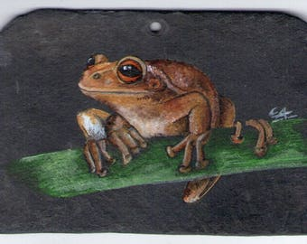 the Brown paint frog pet portrait acrylic