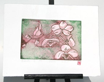 Orchids - Original Etching