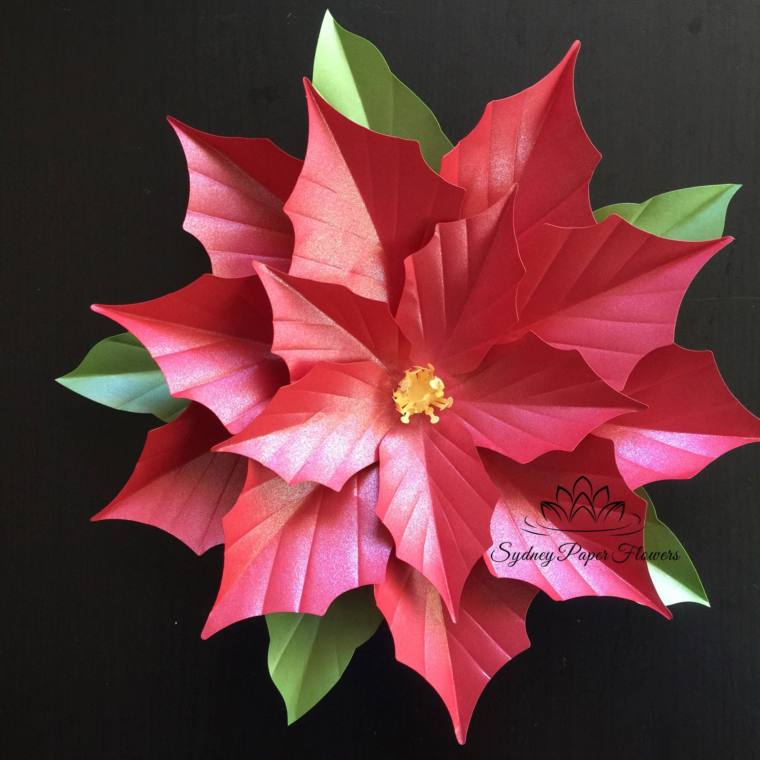 poinsettia paper flower template koni polycode co