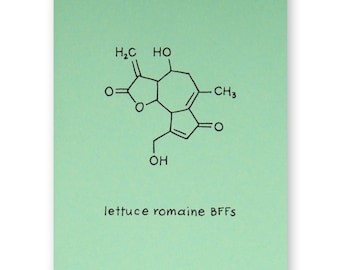 BFF Pun Card - Lettuce Romaine Friend Card - Chemistry Friendship Science Geek Card - Best Friend Any Occasion Card