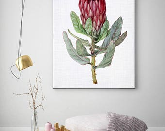 50%OFF,  Protea Print, Bedroom Decor, Modern Contemporary, Large Printable Poster, Digital Download, Photography,Flower Art