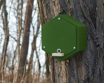 BUMBLEBEE HOUSE, bee home, Insect shelter, bumblebee hotel - Fern